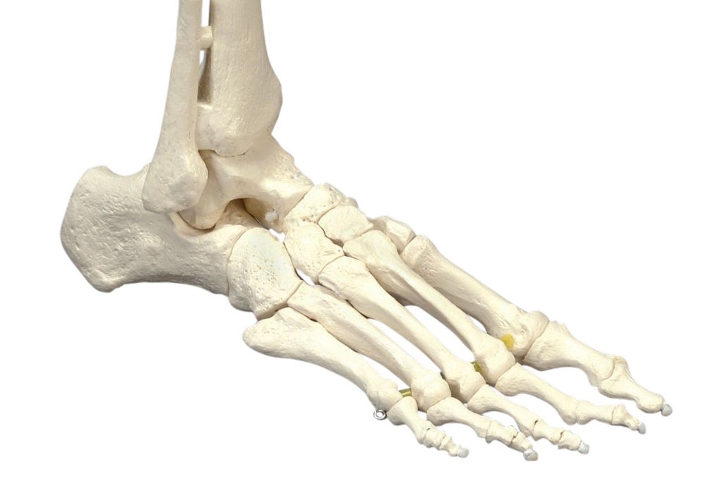 Toe nail surgery – Northcoast Podiatry